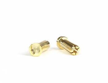 Gold Battery Bullets (2) | Short Post | 5mm