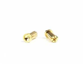 Gold Battery Bullets (2) | Low Profile | 5mm